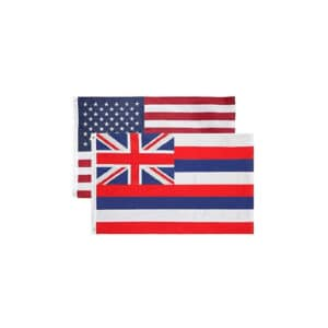 Hawaii State and USA Flags, Twin Pack